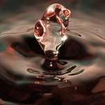 Il diritto umano all'acqua