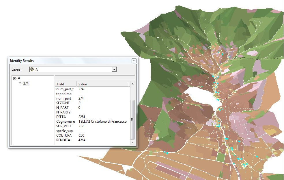 Fig. 2 Elaborazione di un modello 3D con l'applicativo ArcScene. Elaborazione propria