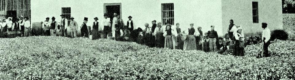 Impresa solidale e relazioni industriali:  alcune riflessioni sul nodo degli anni Settanta