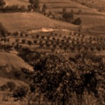 La memoria del territorio tra natura e cultura. Un'esperienza nel Parco regionale della Vena del Gesso Romagnola