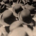 L'Eccidio di Marzagaglia (1° luglio 1920)