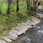 Il disastro di Seveso tra ecologia e politica