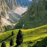 Il proporsi e il consolidarsi di una coscienza ambientale: l'esperienza quarantennale dei parchi naturali del Trentino